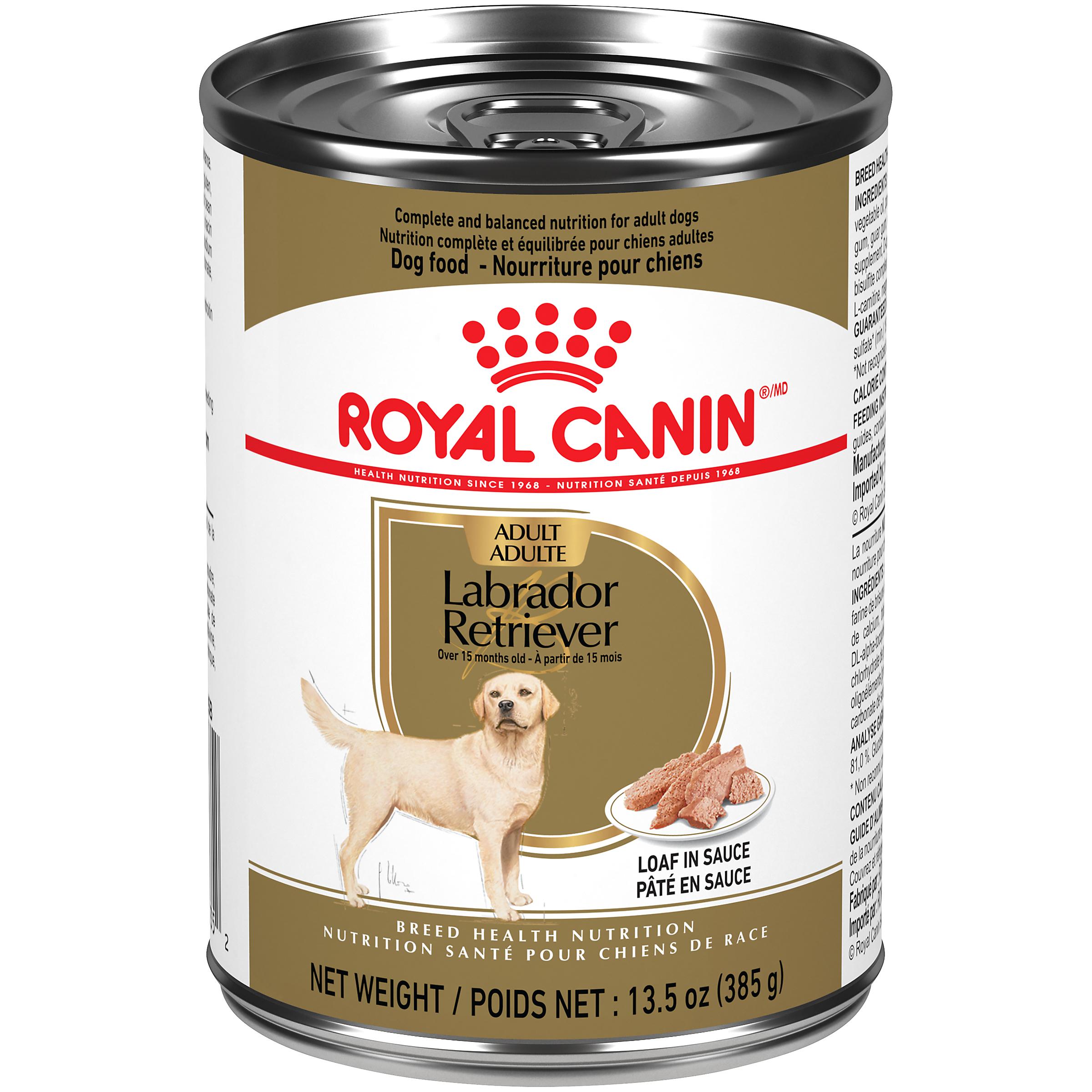 Royal Canin Breed Health Nutrition Labrador Retriever Loaf In Sauce Dog Food