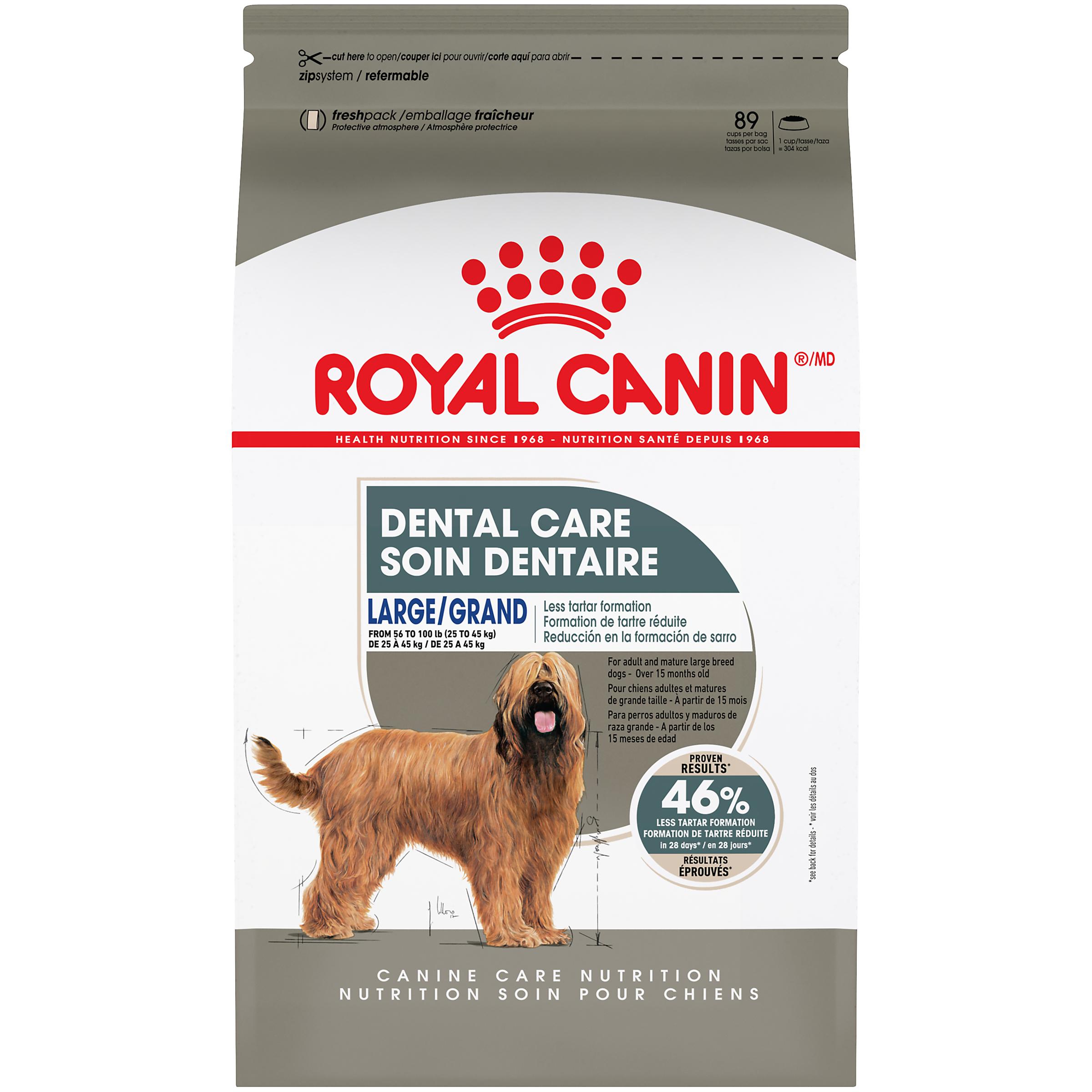Royal Canin Canine Care Nutrition Large Dental Care Dry Dog Food