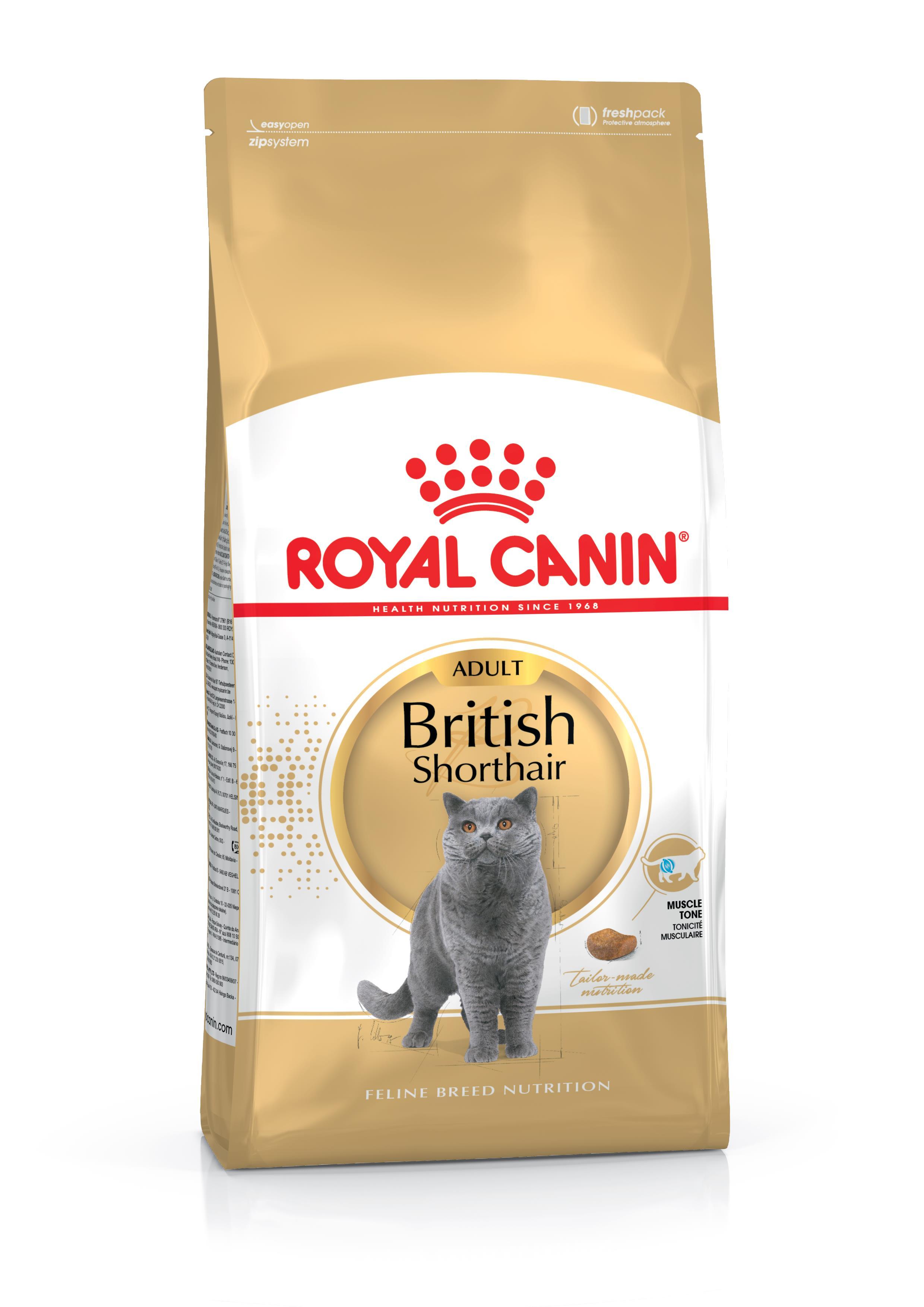 Feline breed nutrition - Royal Canin