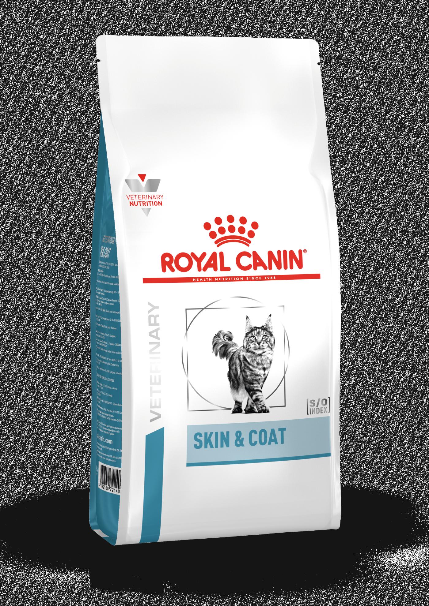 Feline Skin & Coat