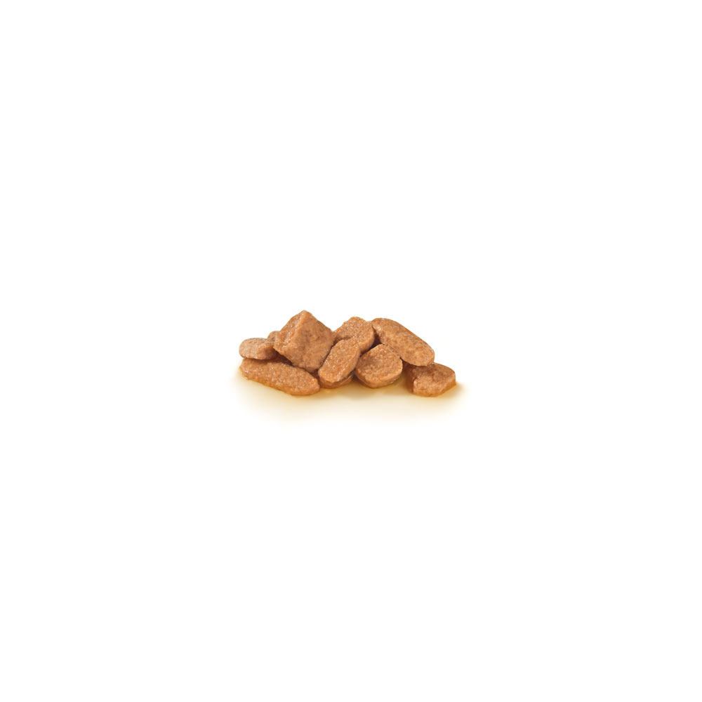 Gastro intestinal moderate calorie (wet) kibble