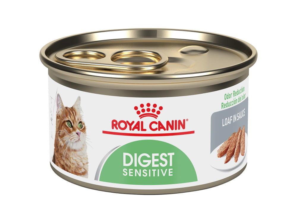 Royal Canin Feline Care Nutrition Digest Sensitive Canned Cat Food