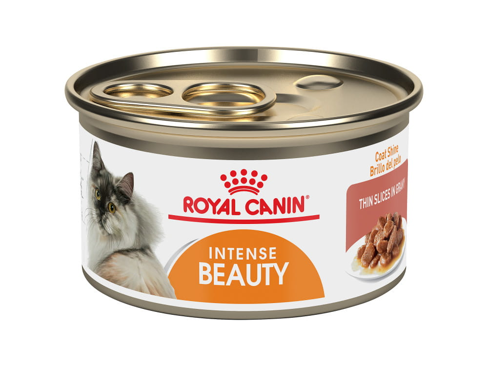 Royal Canin Feline Care Nutrition Intense Beauty Canned Cat Food