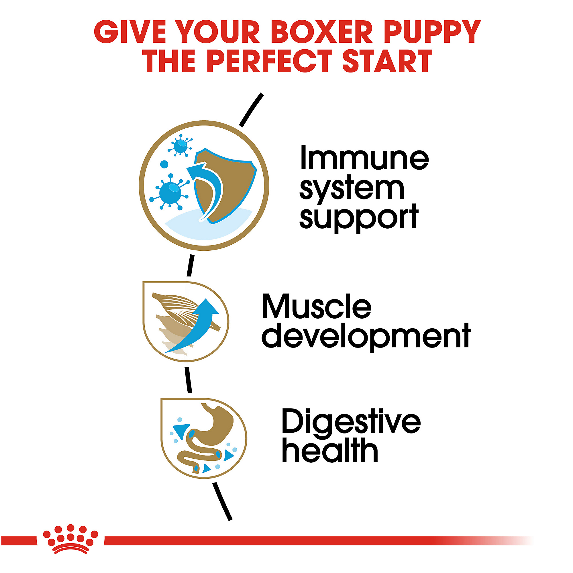 Royal Canin Breed Health Nutrition Boxer Puppy Dry Dog Food