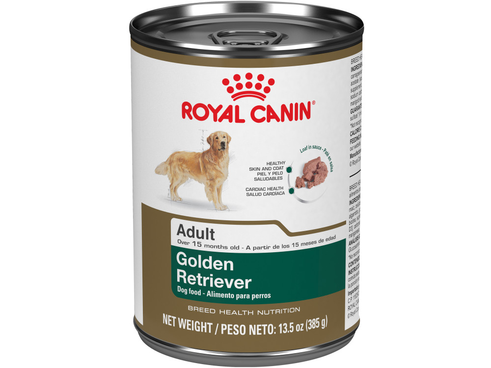 Golden Retriever Puppy Dry Dog Food Royal Canin