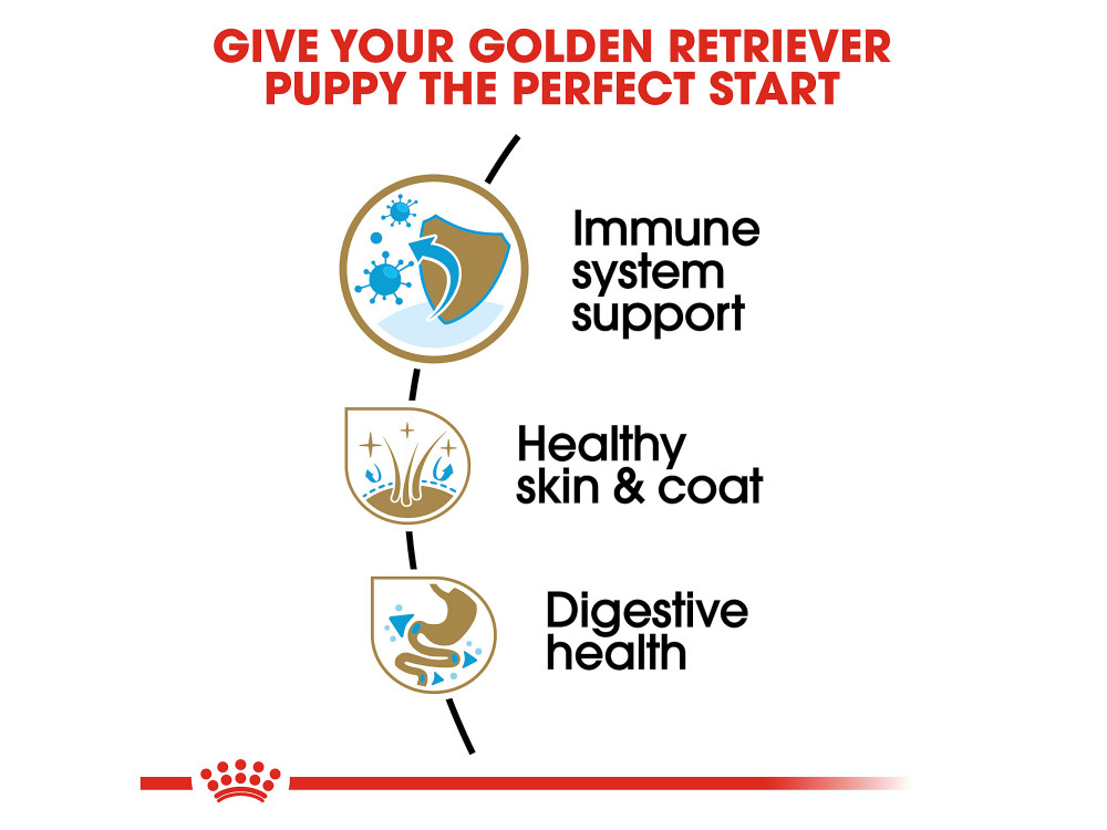 Royal Canin Breed Health Nutrition Golden Retriever Puppy Dry Dog Food