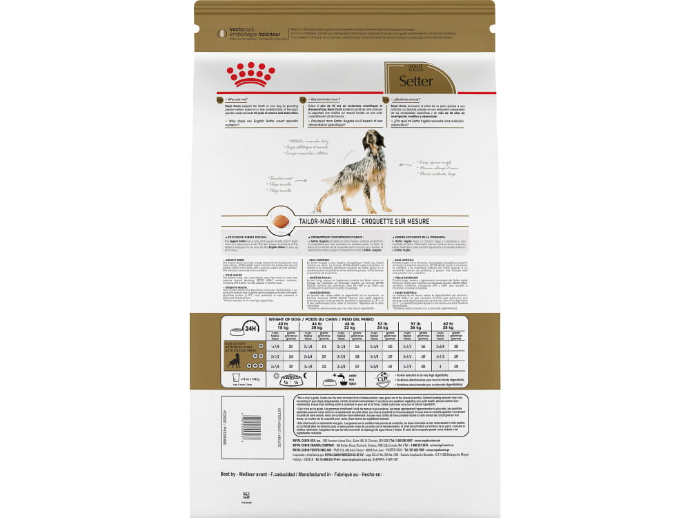 Royal Canin Breed Health Nutrition Setter Adult Dry Dog Food