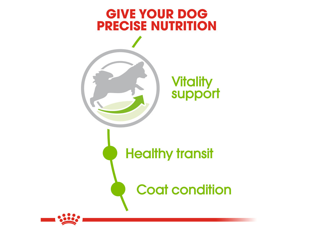 Royal Canin Size Health Nutrition X-Small Adult 8+ Dry Dog Food