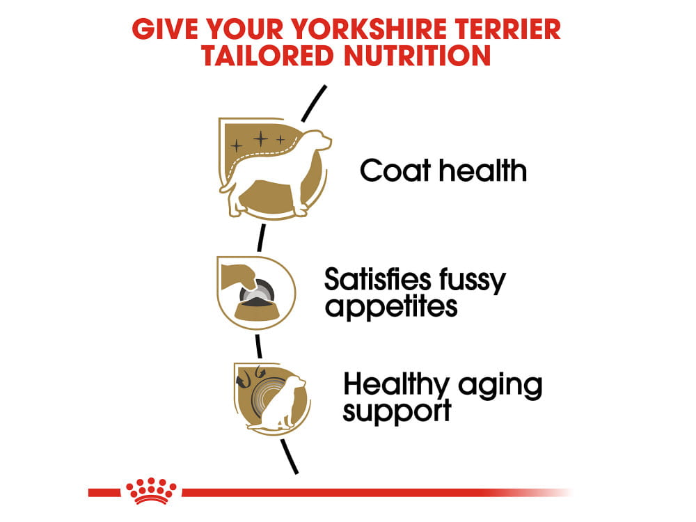 Yorkshire Terrier Adult Dry Dog Food
