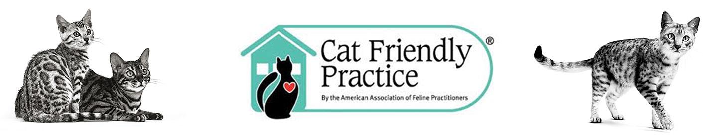 Marca Cat Friendly Practice