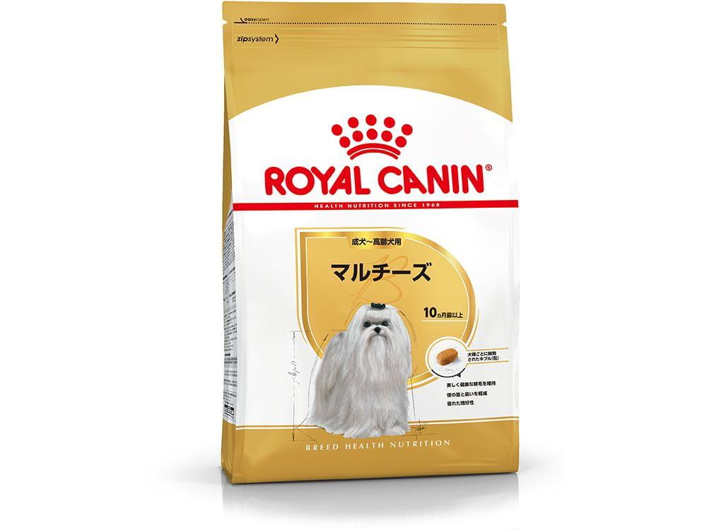 マルチーズ 成犬~高齢犬用