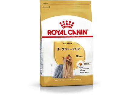 ヨークシャーテリア 成犬~高齢犬用
